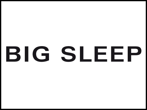Big Sleep Wasserbetten & Wohnen GmbH